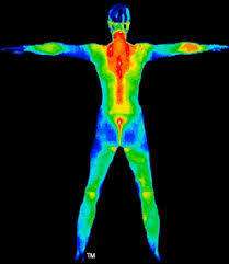 Full_body_thermo